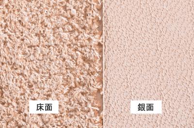 革の銀面と床面の比較画像