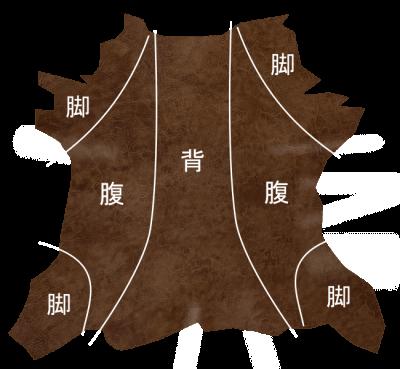 革の各部位